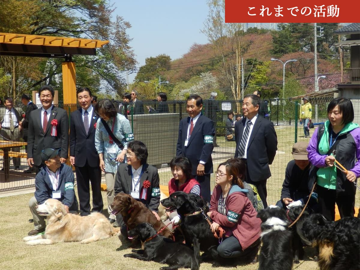 桜ヶ丘公園ドッグラン